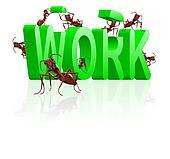 work ants working on career