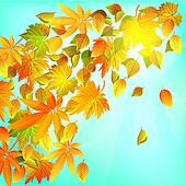 Autumn leaves, nature background