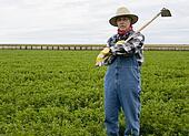 farmer on a hay field