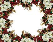 Christmas border flowers