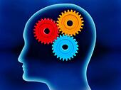 Human brain working