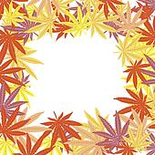 Frame with colored marijuana leaves