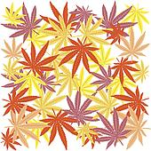 Seamless with colored marijuana leaves
