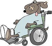 Sick Dog In A Wheelchair