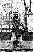 The fruit vendor, vintage engraving.