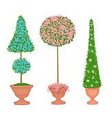 Three Floral Topiaries