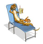 Gecko Relaxing