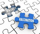 Vaccination Immunity Puzzle Piece Fill Hole Vaccinate Prevent Disease