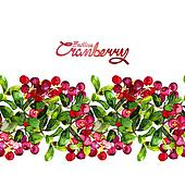Watercolor cranberry border