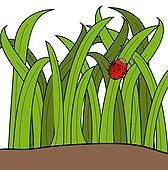lady bug climbing up a blade of grass