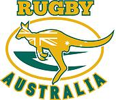kangaroo wallaby australian rugby