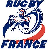 rugby ball rooster cockerel france