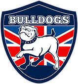 Proud English bulldog British flag