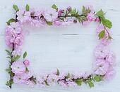 Flowers frame on white wooden