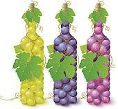 Vine grape bottles
