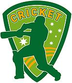 cricket sports player batsman bat