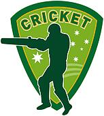 cricket sports player batsman bat