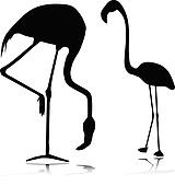 flamingo vector silhouettes