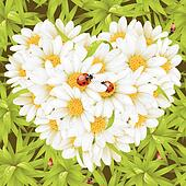 Camomile Heart, seamless background