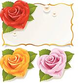 Greeting card with rose in the shap