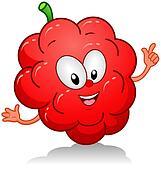 Raspberry Gesture
