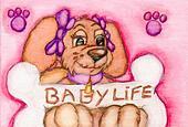 Baby\'s Life