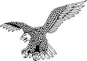 Detailed eagle vector