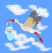 Stork carrying infant in beak