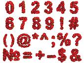 Raspberry digits on white background