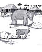 Elephants Held Captive