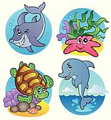 Various sea animals and fishes
