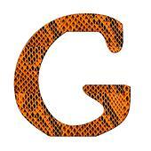 Snake skin alphabet isolate on white