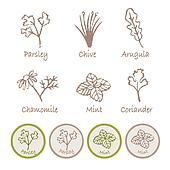 Various herb set