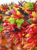 Chili peppers hang bunched.