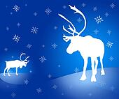 Two caribou reindeer Christmas card