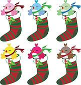 Christmas bird set in socks