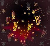 Christmas star show
