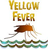 Yellow Fever Mosquito, Still Water