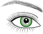 Eye of woman, vector, illustration