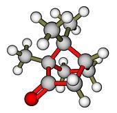 Camphor 3D molecular model