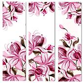 Floral vertical brochures set with magnolia flowers painted in watercolor style by spots