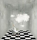 Clouds and ducks in a surreal room