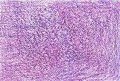 Raster background. Colorful pastel textured paper for Your design
