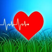 Heart Pulse Indicates Valentines Day And Cardiology
