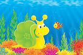 Sea Snail and Fish