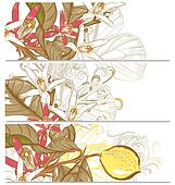 Backgrounds set with lemon flowers