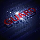 Digital Guaerd Binary Code Blue Background