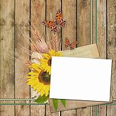 Card for invitation or congratulation with  sunflowers  and butterfly