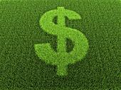 Grass Dollar Sign