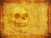 Old Parchment Background with Skull and Border